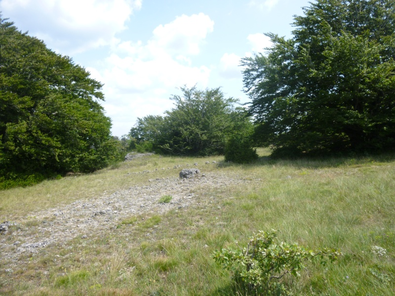 Terrain de 60 ha sur le Larzac P1040020