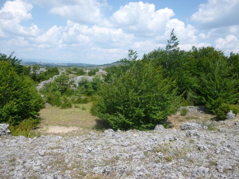Terrain de 60 ha sur le Larzac P1040022
