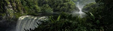 La Jungle Naine
