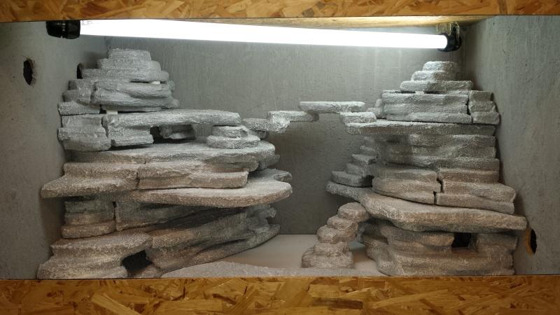 future terrarium de mes geckos léopard  20141015