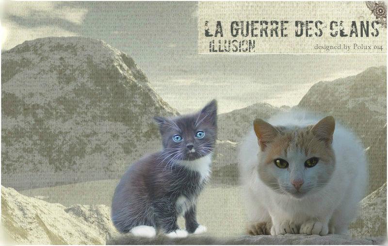 Bannière du forum LGDC Illusion 10575611
