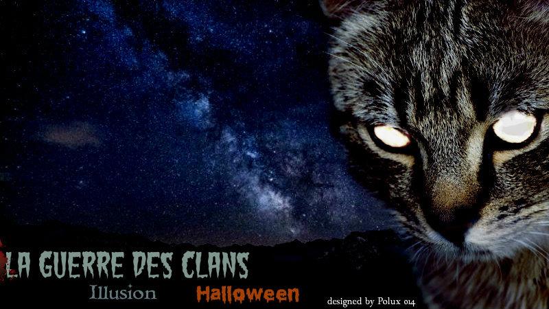 Bannière du forum LGDC Illusion Lynx11