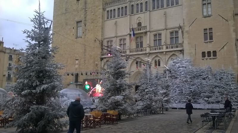 C'est Noël Narbon11