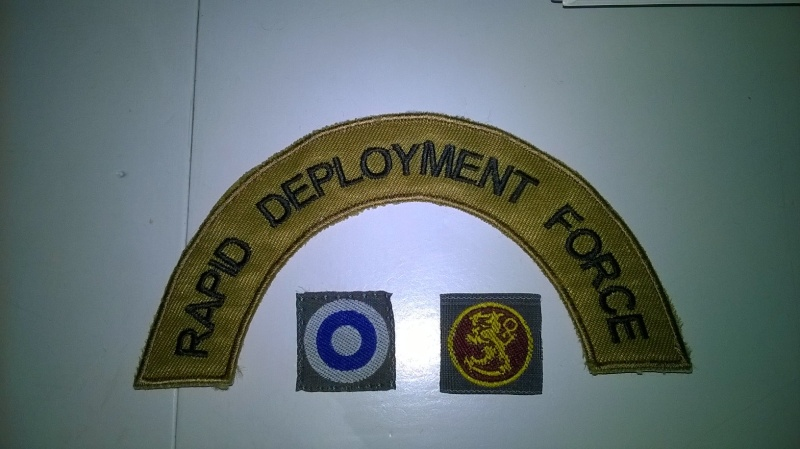 FDF patches and insignia Wp_20131
