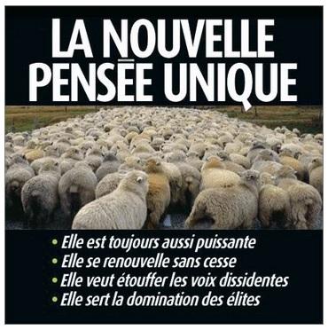 """Elus et Indemnités : les révélations du """"fil andoléen"""" Pensae10"""