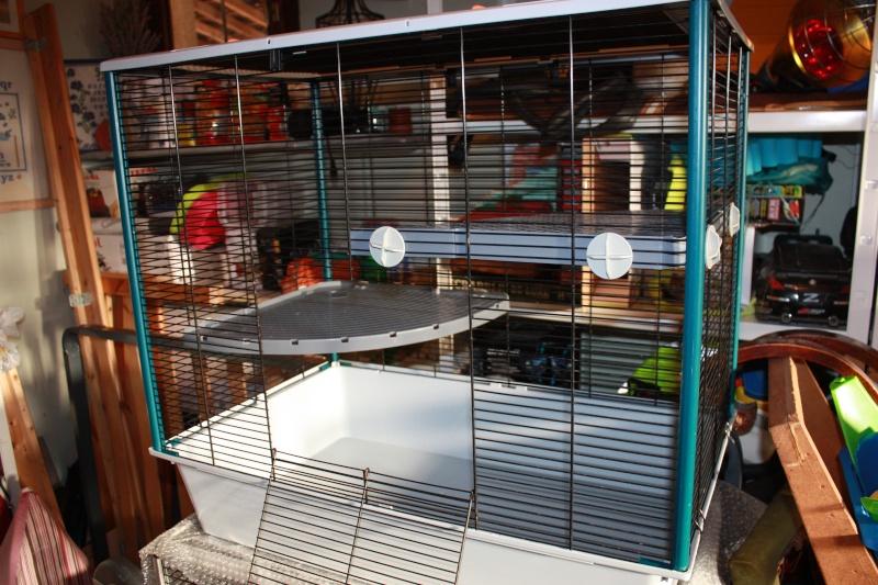 Lot de 2 cages: Jenny KD & Furet Plus + accessoires ~ dept 95  Img_2710