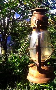En un clic dans mon jardin ou en balade... Lanter10