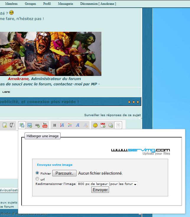 """panne Servimg - Erreur """"404 Not Found nginx"""" 31-10-16"""