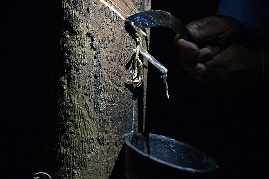 Thailand Plans Aid to Rubber Farmers as Prices Fall Bn-fa810