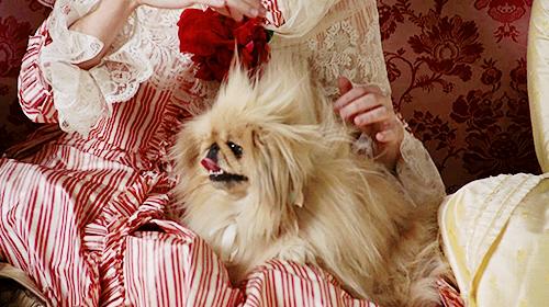 Marie Antoinette avec Kirsten Dunst (Sofia Coppola) - Page 2 Tumblr13