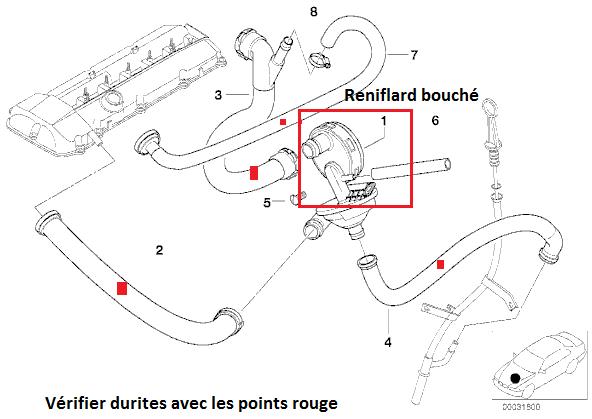 [BMW E39 523i touring bva 1999] Bruit de souffle venant du puit de jauge à huile 11_m5213