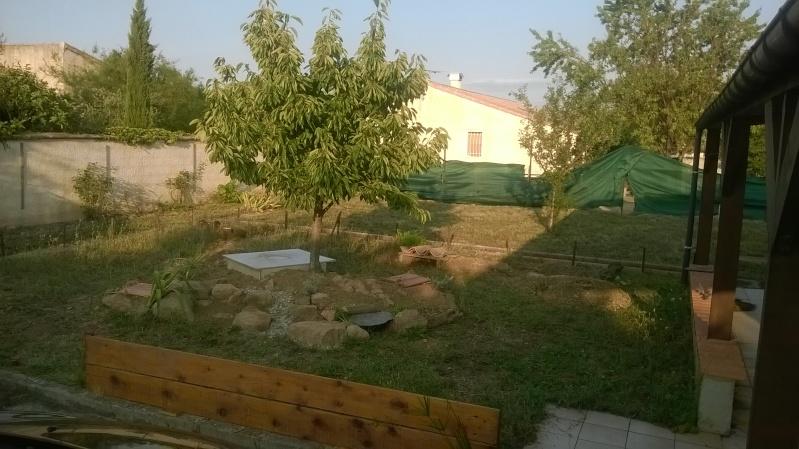 Nouveau parc pour graeca Wp_20110