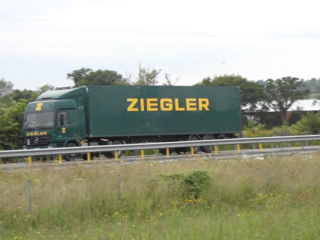 Ziegler - Page 5 Dsc02620