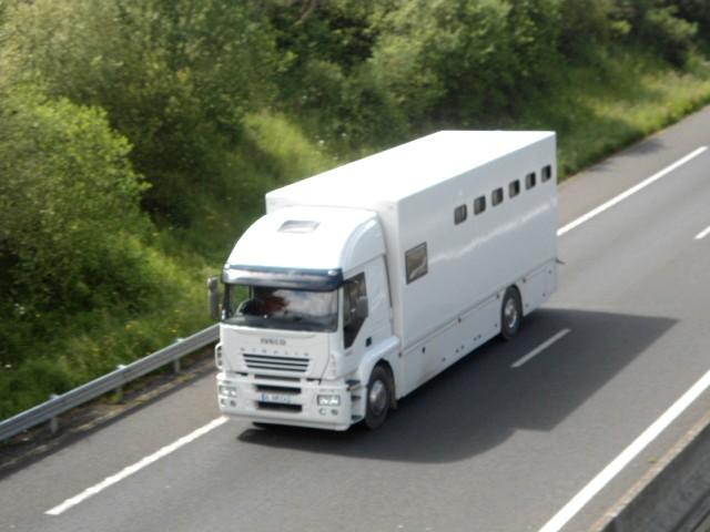 Transports de chevaux - Page 4 Dsc02682