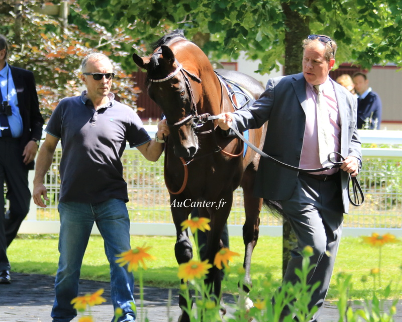 Photos Compiègne 23-06-2018 - Page 2 5j6a4425