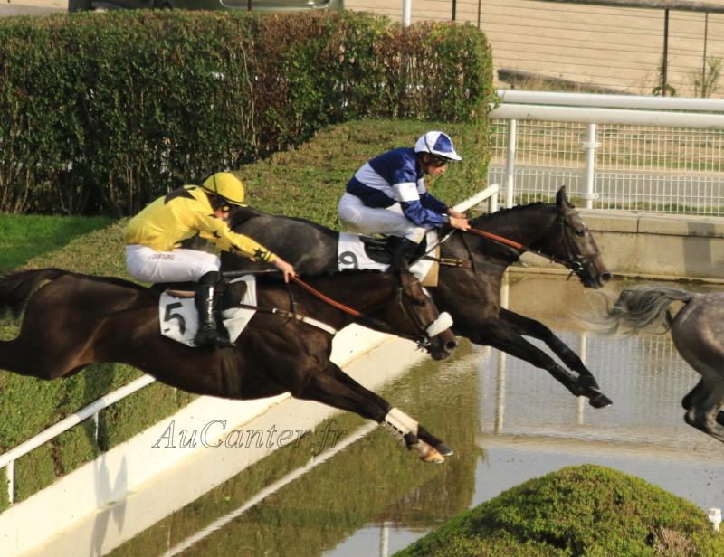 Photos Auteuil 14-10-2018 - Page 2 5j6a7924