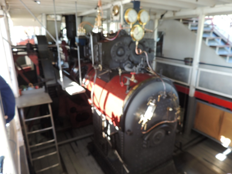 Murrey river paddle steamers Dscn1510