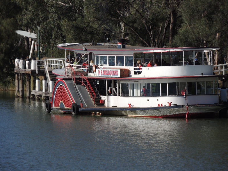 Murrey river paddle steamers Ps_mel12