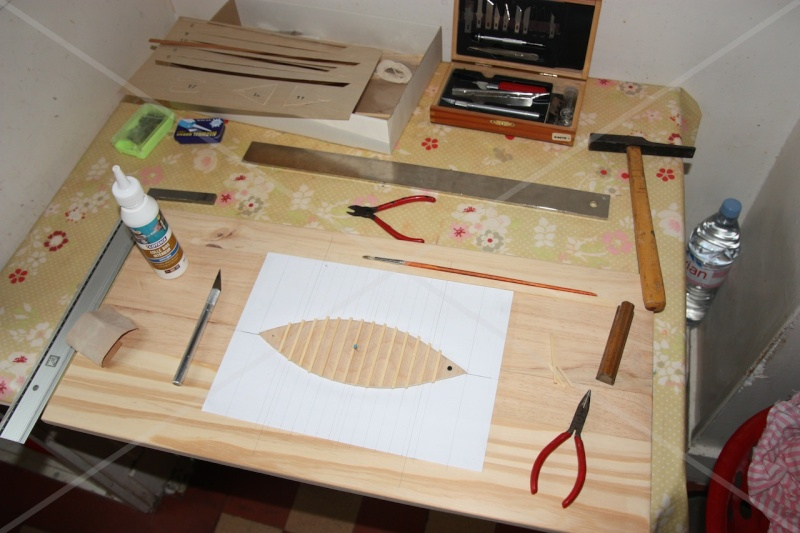 Mise en chantier d'une Bette provençale au 1/20 Img_1610
