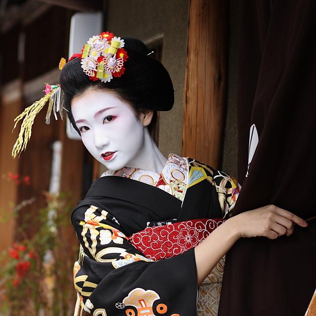 Bibliographie Geisha10