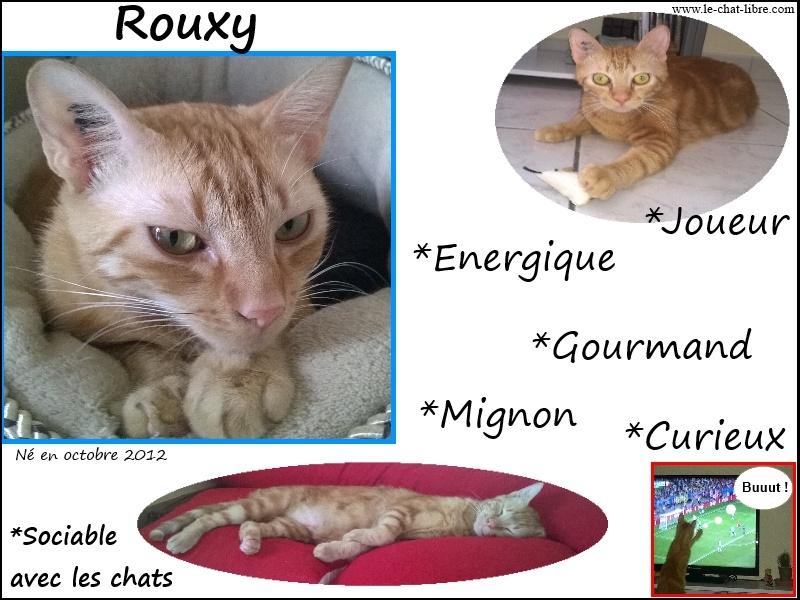 Des nouvelles de Rouxy - Page 2 Affich10