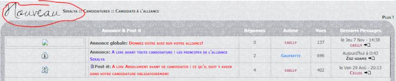 A lire avant toute candidature : les principes de l'alliance Siralya New10