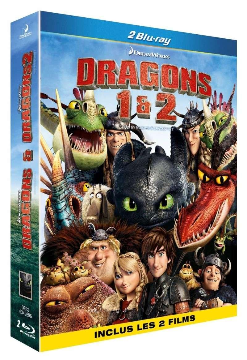 Dragons pour les débutants 91vbhn10