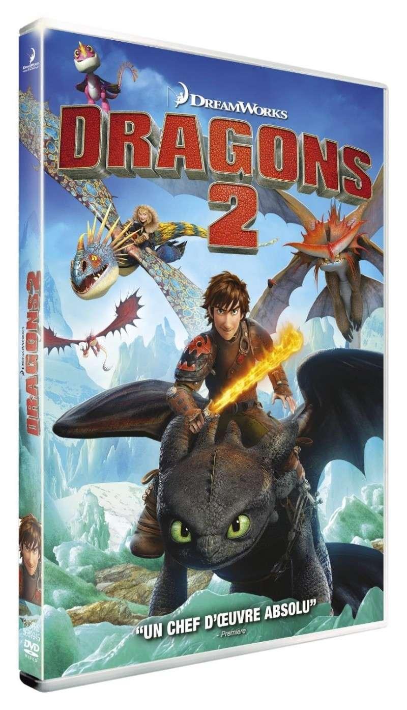Dragons pour les débutants Dragon12