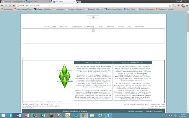 Un beug d'affichage sur le forum, prevenez nous ! - Page 6 Sans_t14