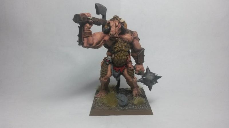 Beastmen Warband - Page 2 Mino110