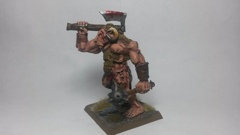 Beastmen Warband - Page 2 Mino210
