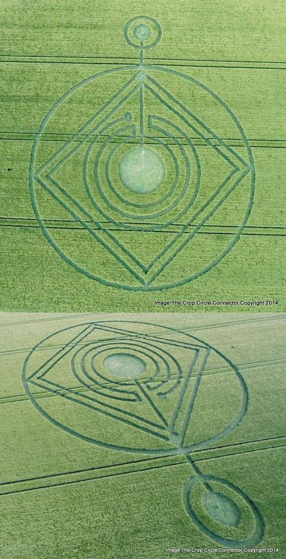 Crop Circles 2014.  - Page 6 Hodhil10