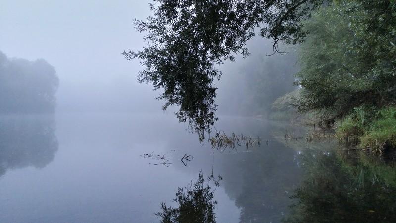 Le Cher (la rivière) 20140911