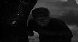 The Wolf Man (1941) [Horror | Drama] 515