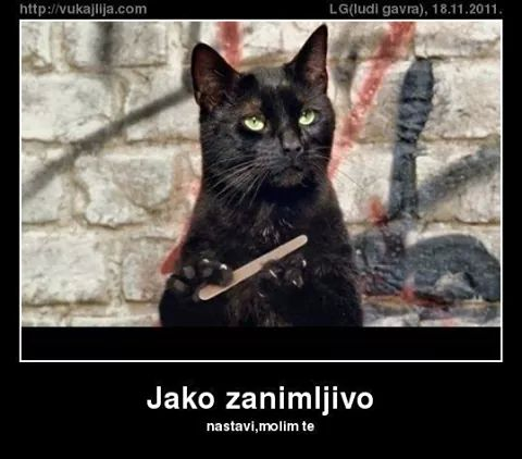 Životinjski meme album Img_1311