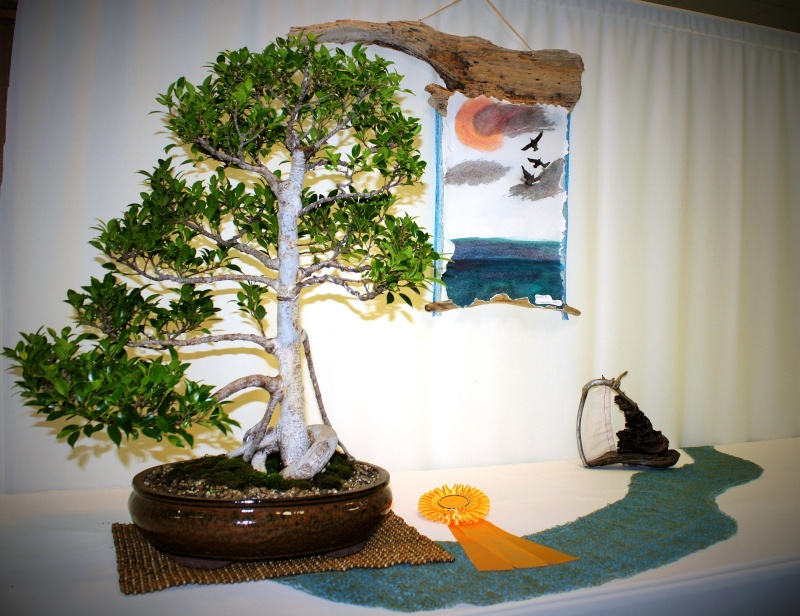 Milwaukee Bonsai Society 44th Annual Exhibit Mbs_2014