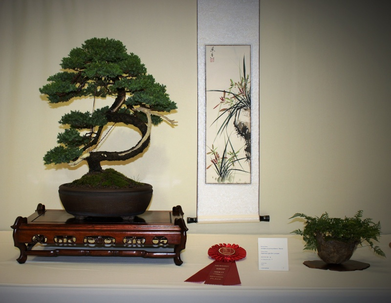 Milwaukee Bonsai Society 44th Annual Exhibit Mbs_2032