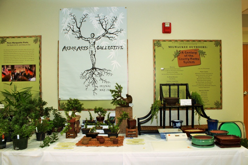 Milwaukee Bonsai Society 44th Annual Exhibit Mbs_2059