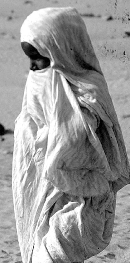 [Le désert] Sahara et atlantique : plus au Sud , bivouacs , photos ... Adrar_10