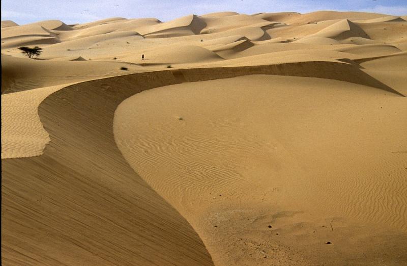 Bonne année- Alerte orange:les sables ! Chingu11