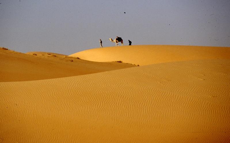 Bonne année- Alerte orange:les sables ! Dans_l10