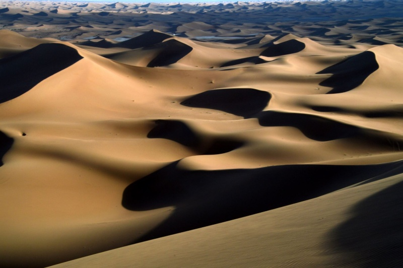 Bonne année- Alerte orange:les sables ! Dsc_0023