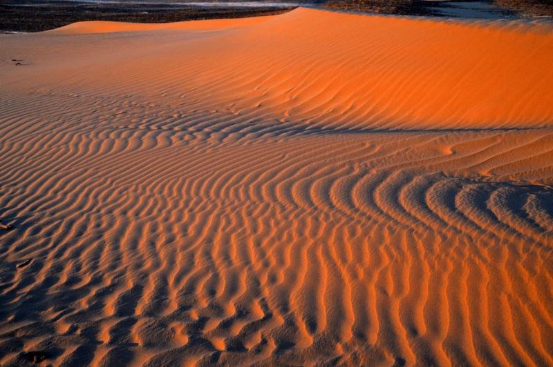 Bonne année- Alerte orange:les sables ! Dsc_0025