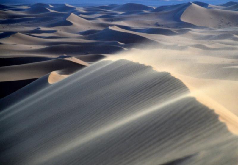 Bonne année- Alerte orange:les sables ! Dsc_0026