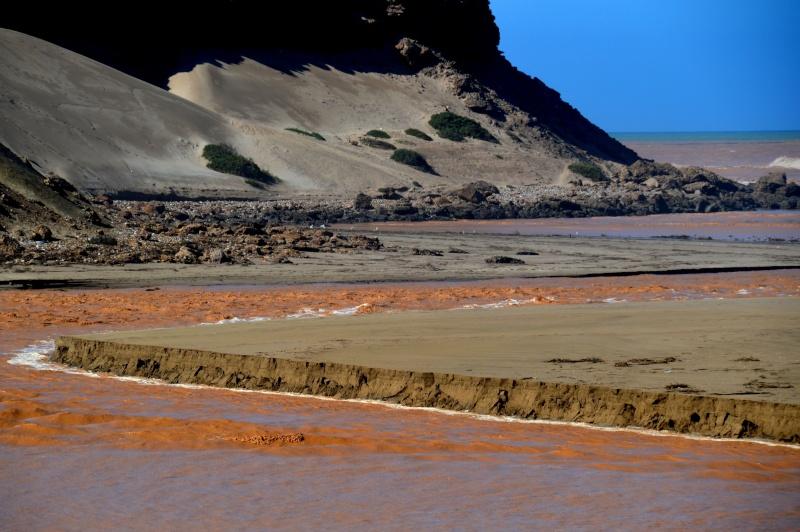 Bonne année;Le Sahara nouveau est arrivé ...photos Dsc_0512