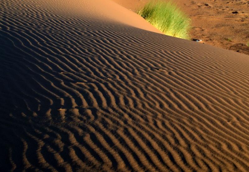 Bonne année- Alerte orange:les sables ! Dsc_0515