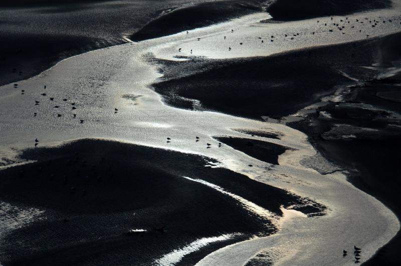 Joyeux Noël:le Sahara nouveau se boit avec de l'eau(2)photos Dsc_0618