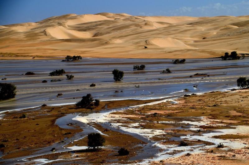 [Le désert] Sahara et atlantique : plus au Sud , bivouacs , photos ... Dsc_0621