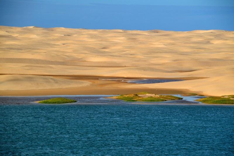 [Le désert] Sahara et atlantique : plus au Sud , bivouacs , photos ... Dsc_0720