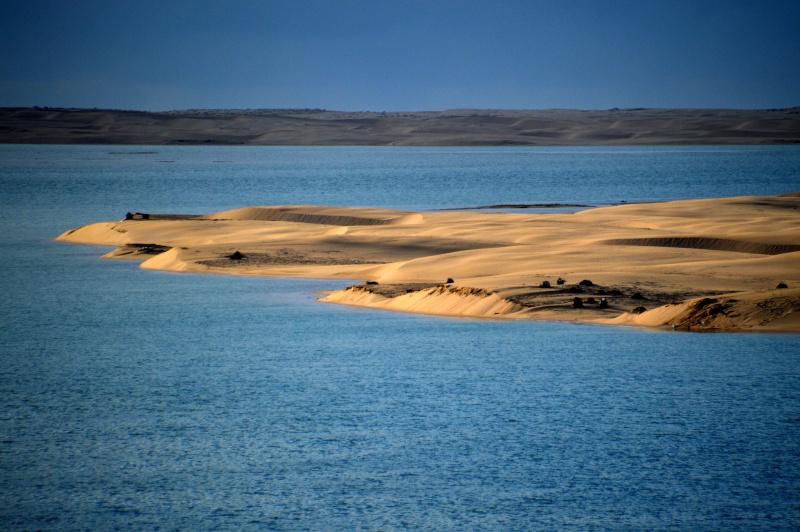 [Le désert] Sahara et atlantique : plus au Sud , bivouacs , photos ... Dsc_0722